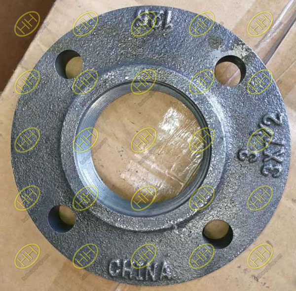 Casing Threaded Flange