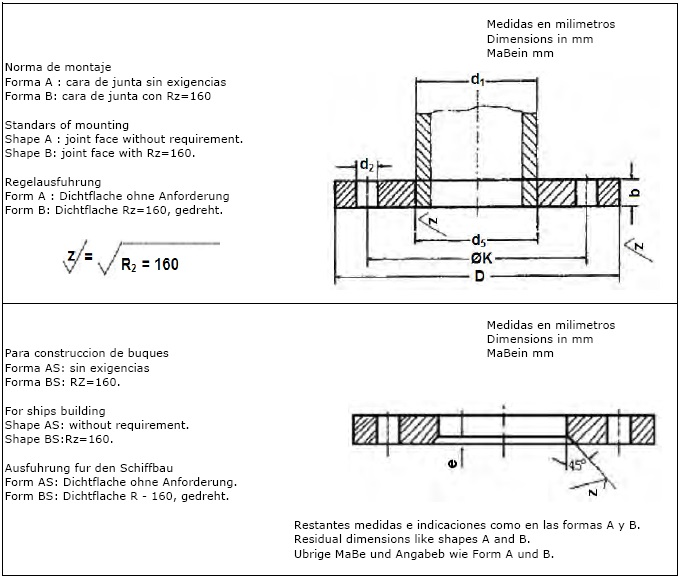 DIN-2573-PN6-Flat-Flange-for-Welding-Plate-Slip-On