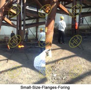 Small-Size-Flanges-Foring