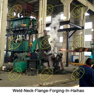 Weld-Neck-Flange-Forging-In-Haihao