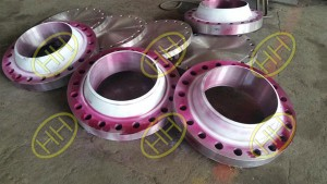 Weld Neck Flange and Blind Flange