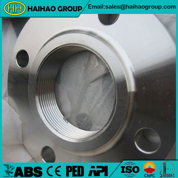 A182 F316 DIN 2565 PN6 DN6-DN200 Threaded Flange